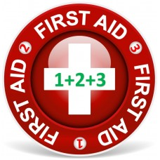 First Aid Level 1 and  2  and 3  combined (1-3 persons)